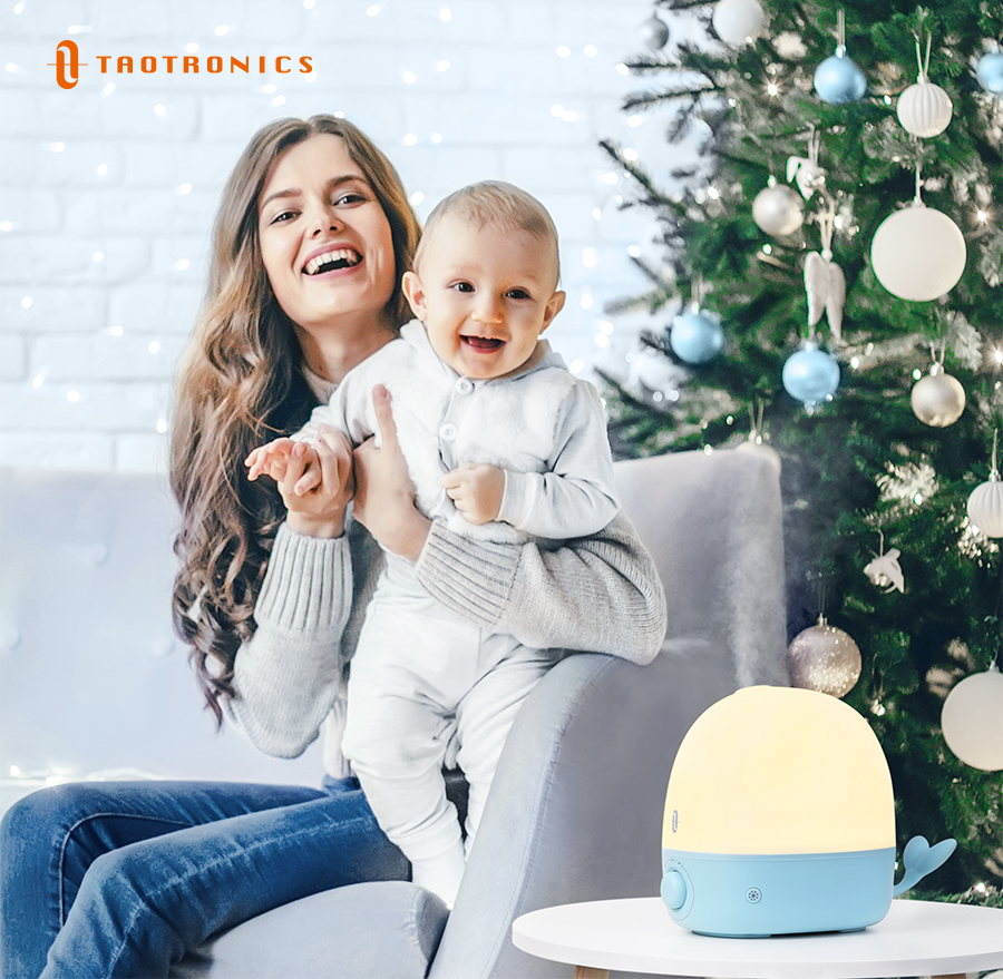 Get a Humidifier for Christmas