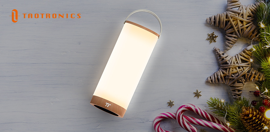 This Christmas, the best gift to give your Mom is a bedside table lamp TT-DL23